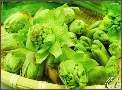 春野菜のコピー